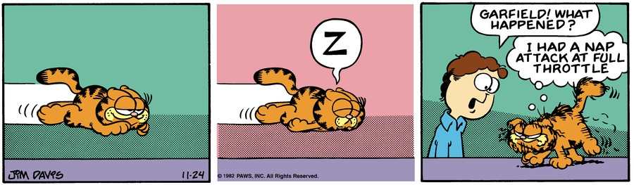 Garfield Classics Comic Strip for November 29, 2020