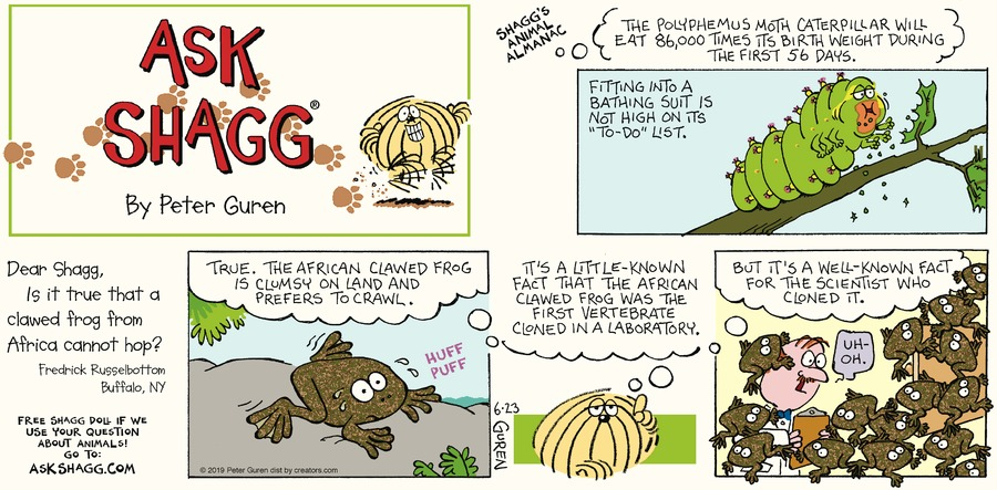 Ask Shagg Comic Strip for June 23, 2019