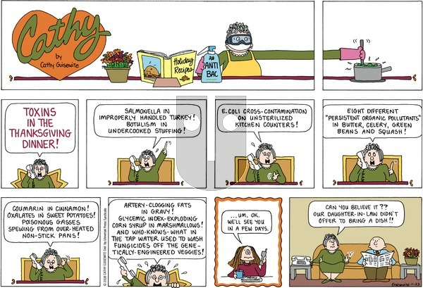 Cathy on Sunday November 23, 2008 Comic Strip