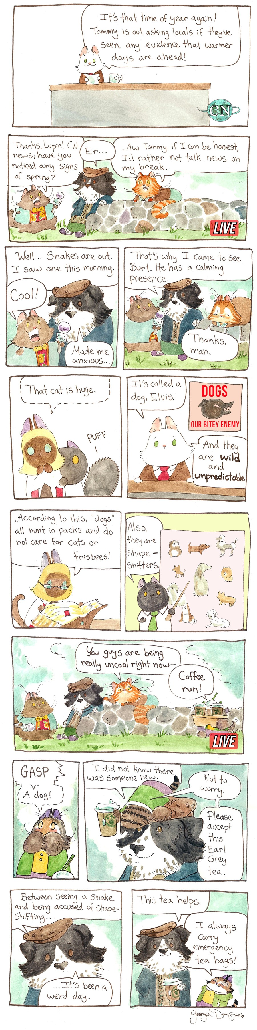 Breaking Cat News for May 15, 2016 Comic Strip
