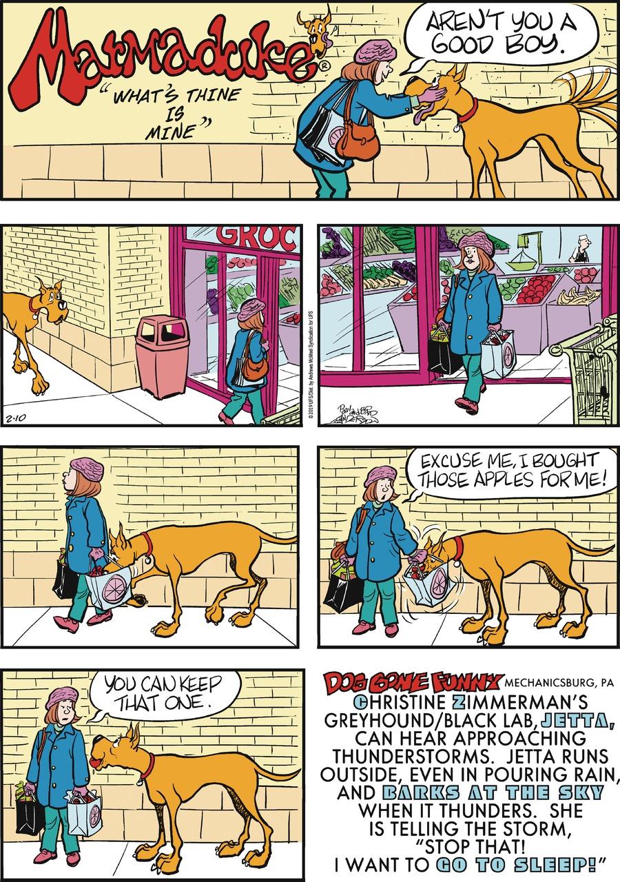 Marmaduke Comic Strip for February 10, 2019