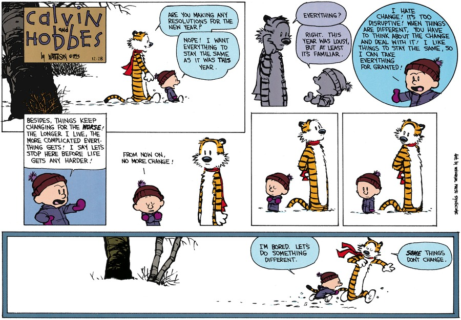 Calvin and Hobbes Comic Strip for December 26, 1993