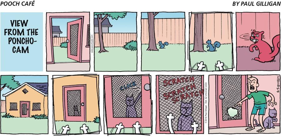 Pooch Cafe Comic Strip for June 05, 2016