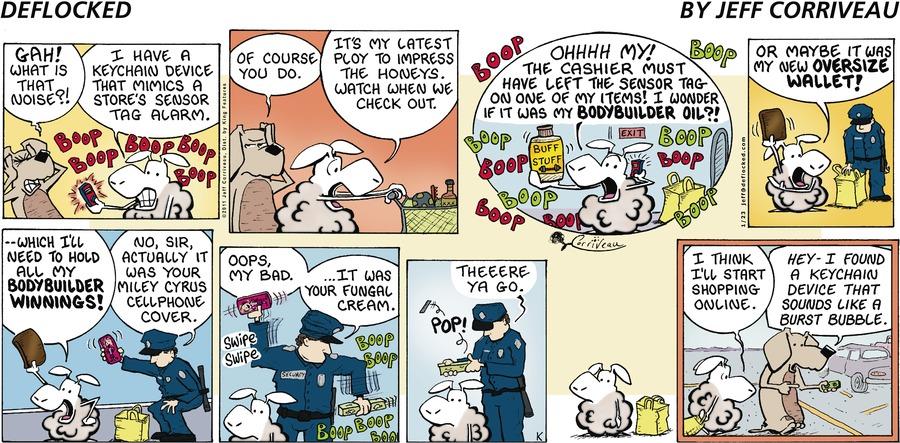 DeFlocked Comic Strip for January 23, 2011