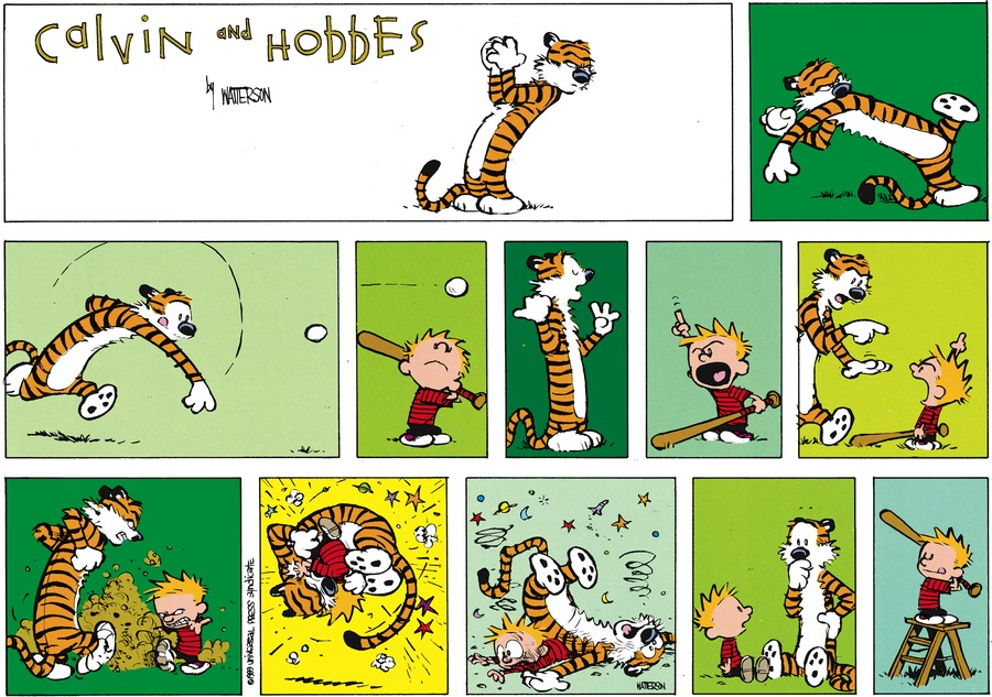 Calvin and Hobbes for Aug 6, 1989 Comic Strip