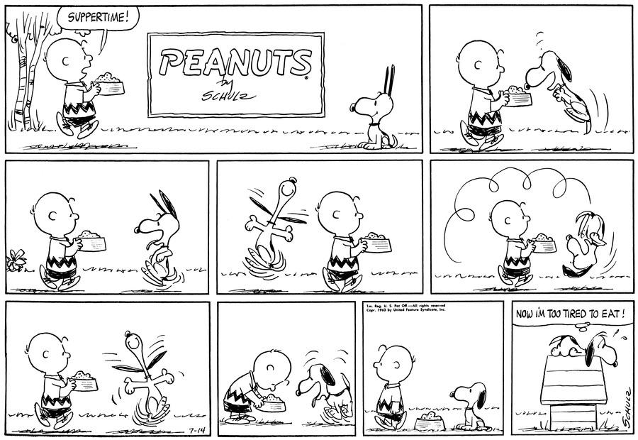 Peanuts Comic Strip for July 14, 1963
