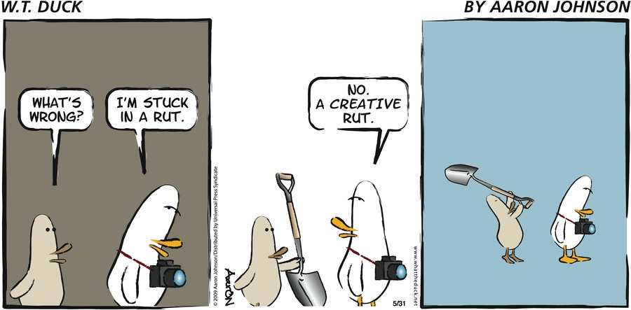 W.T. Duck Comic Strip for May 31, 2009