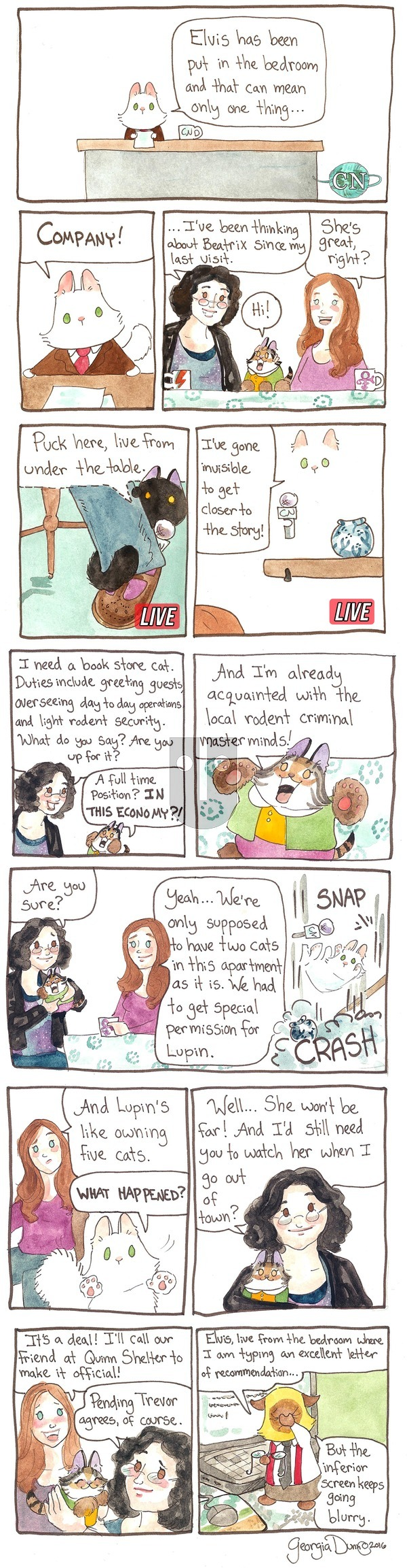 Breaking Cat News on Sunday May 22, 2016 Comic Strip