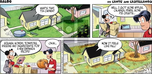 Baldo on Sunday October 14, 2018 Comic Strip