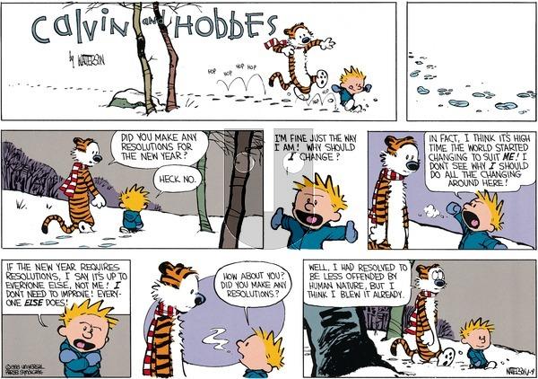 Calvin and Hobbes - Sunday January 3, 1988 Comic Strip