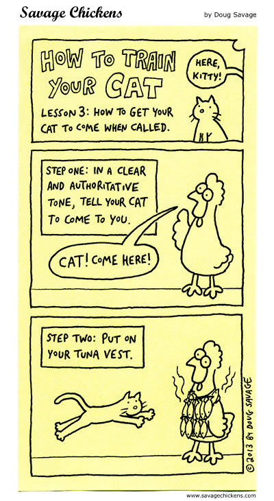 How to train your cat: Lesson 3: How to get your cat to come home when called. 
