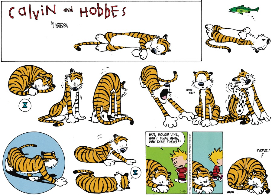 Calvin and Hobbes Comic Strip for March 15, 2020