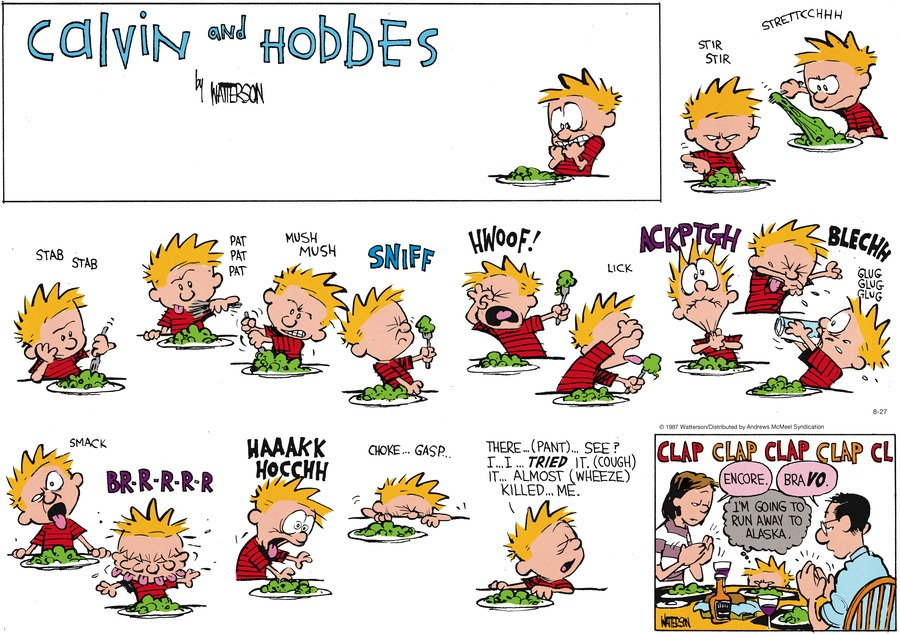 Calvin and Hobbes for Aug 27, 2017 Comic Strip