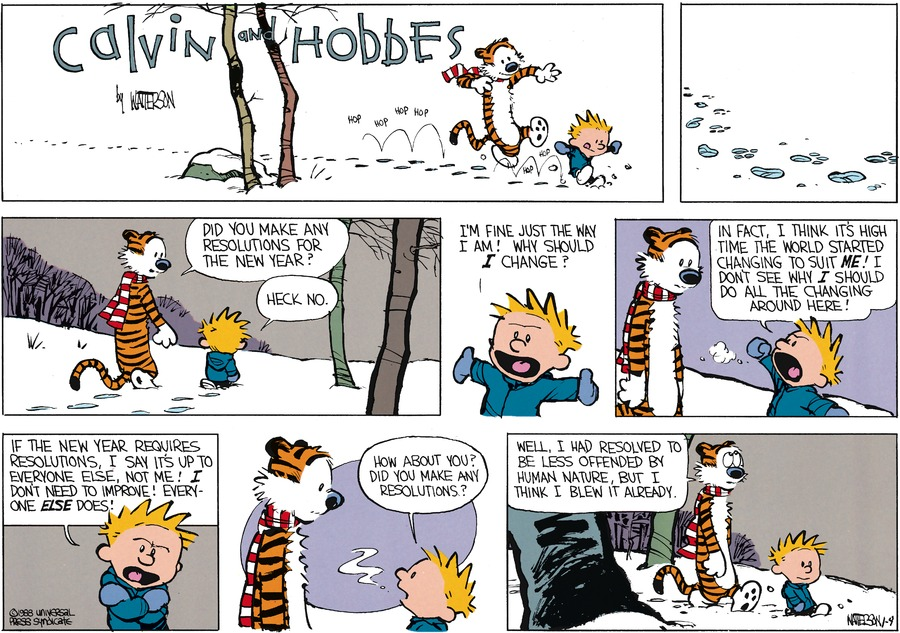 Calvin and Hobbes Comic Strip for January 03, 1988