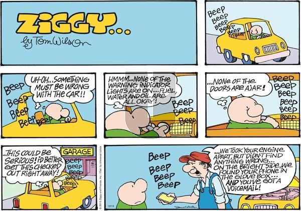 Ziggy on Sunday December 13, 2015 Comic Strip