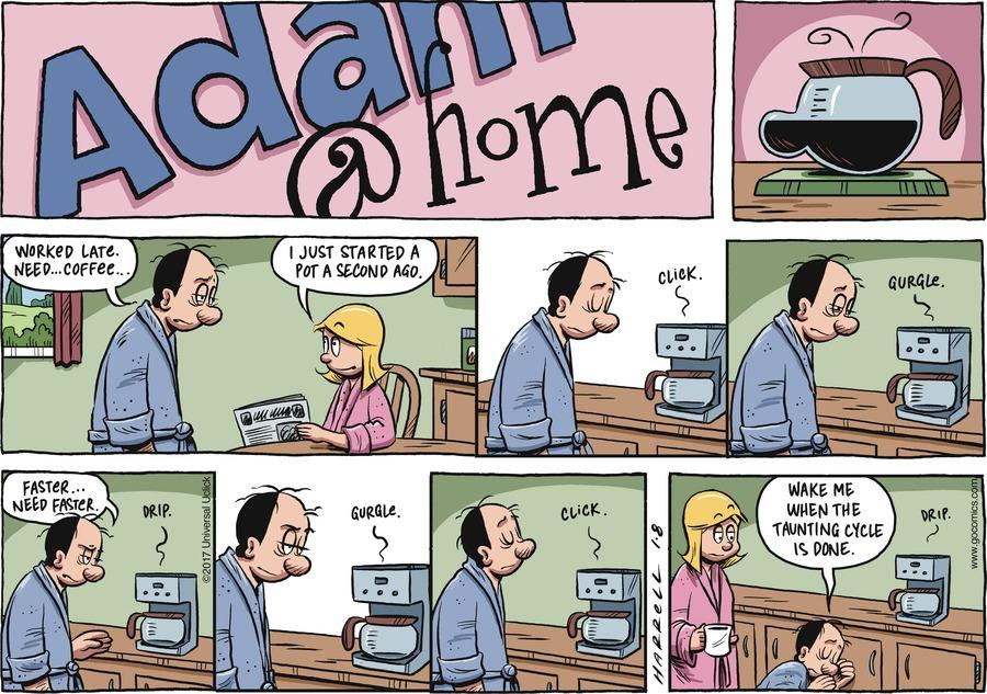 Adam@Home for Jan 8, 2017 Comic Strip