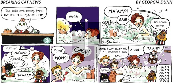 Breaking Cat News - Sunday October 20, 2019 Comic Strip