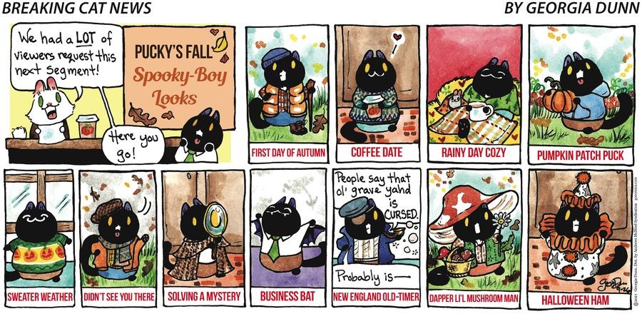 Breaking Cat News Comic Strip for September 26, 2021