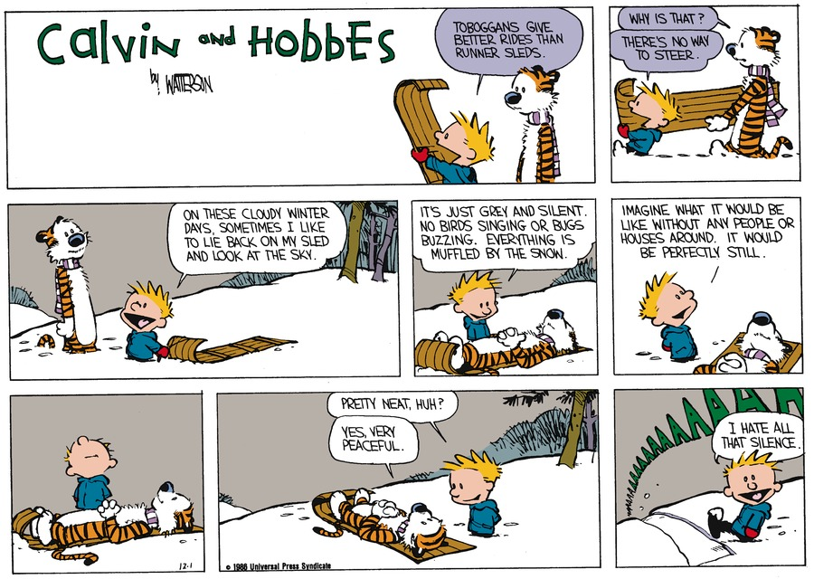 Calvin and Hobbes Comic Strip for December 28, 1986