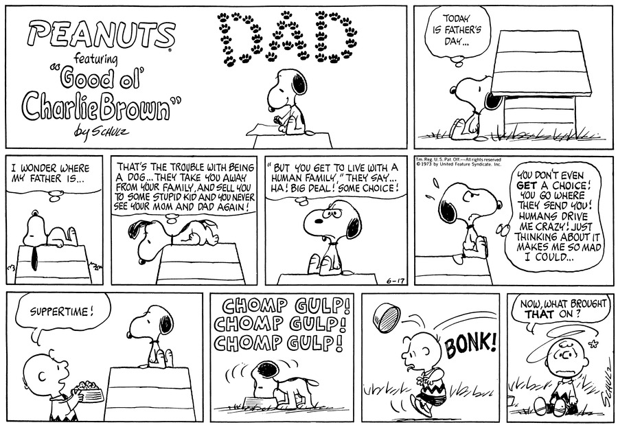 Peanuts Comic Strip for June 17, 1973