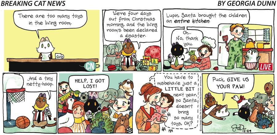 Breaking Cat News Comic Strip for December 29, 2019