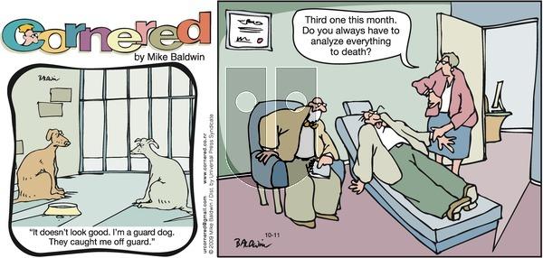 Cornered on Sunday October 11, 2009 Comic Strip