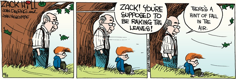 Zack Hill Comic Strip for October 13, 2019