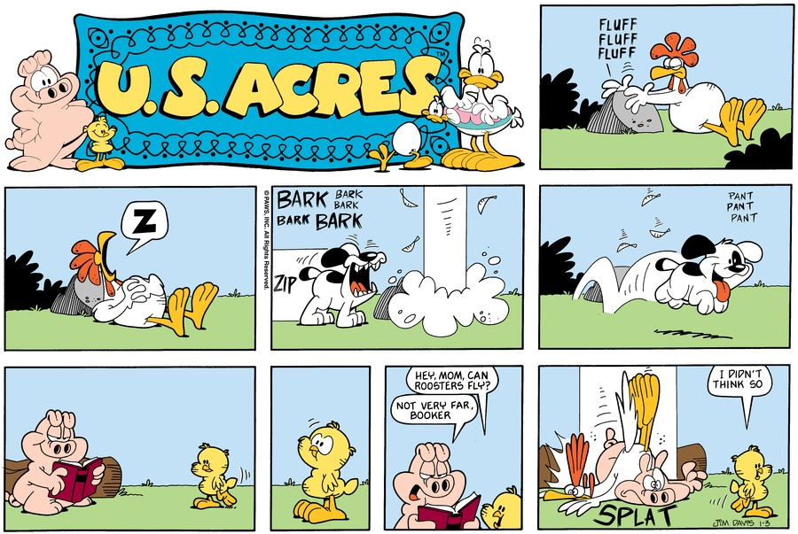 U.S. Acres Comic Strip for January 03, 1988