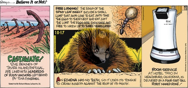Ripley's Believe It or Not on Sunday October 17, 2021 Comic Strip