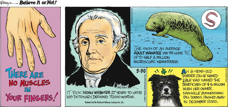 Ripley's Believe It or Not Comic Strip for May 30, 2021