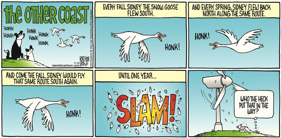 The Other Coast Comic Strip for November 18, 2012