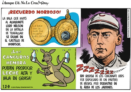 Ripley's Believe It or Not - Spanish Comic Strip for December 09, 2018