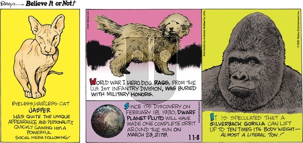 Ripley's Believe It or Not on Sunday November 8, 2020 Comic Strip
