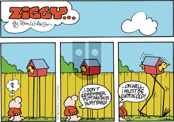 Ziggy on Sunday June 20, 2021 Comic Strip