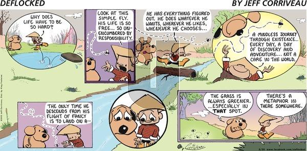 DeFlocked on Sunday May 20, 2012 Comic Strip