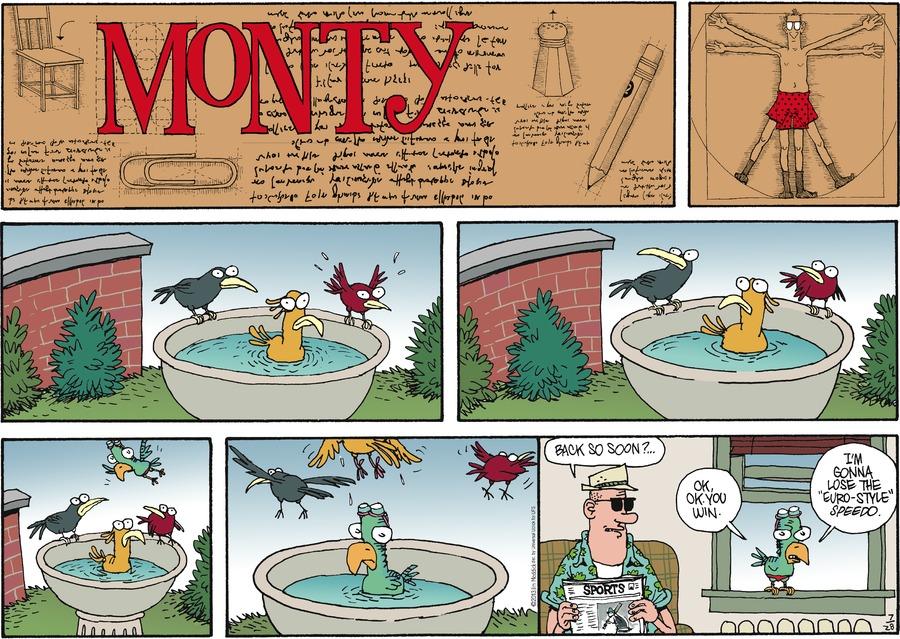 Monty Comic Strip for July 28, 2013