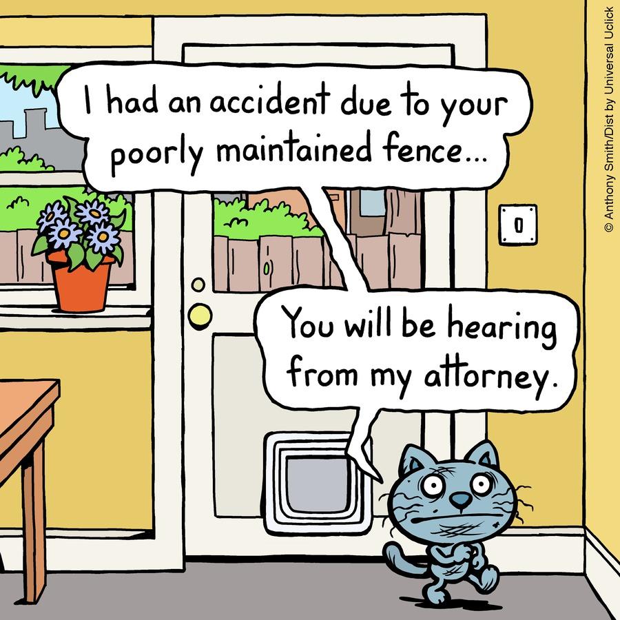 Cattitude — Doggonit Comic Strip for January 24, 2021