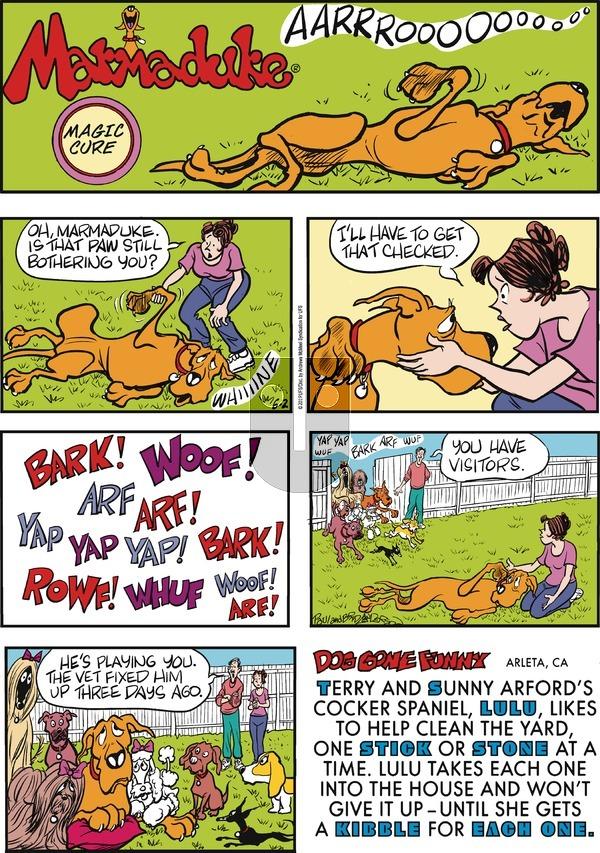 Marmaduke on Sunday June 2, 2019 Comic Strip