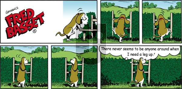 Fred Basset - Sunday June 7, 2015 Comic Strip