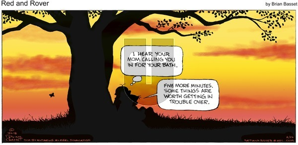 Red and Rover on Sunday August 26, 2018 Comic Strip