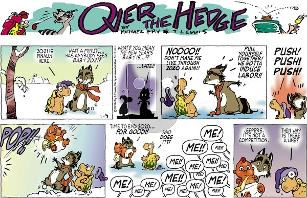 Over the Hedge on Sunday January 3, 2021 Comic Strip