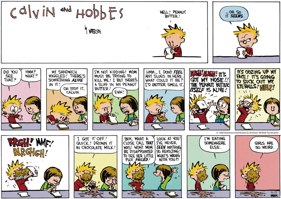 Calvin and Hobbes Comic Strip for September 13, 2020