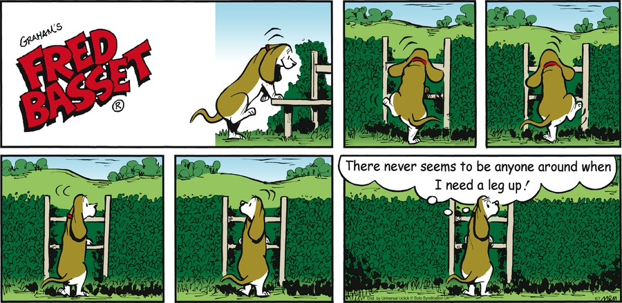 Fred Basset Comic Strip for June 07, 2015