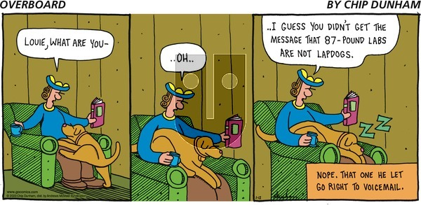 Overboard on Sunday January 12, 2020 Comic Strip