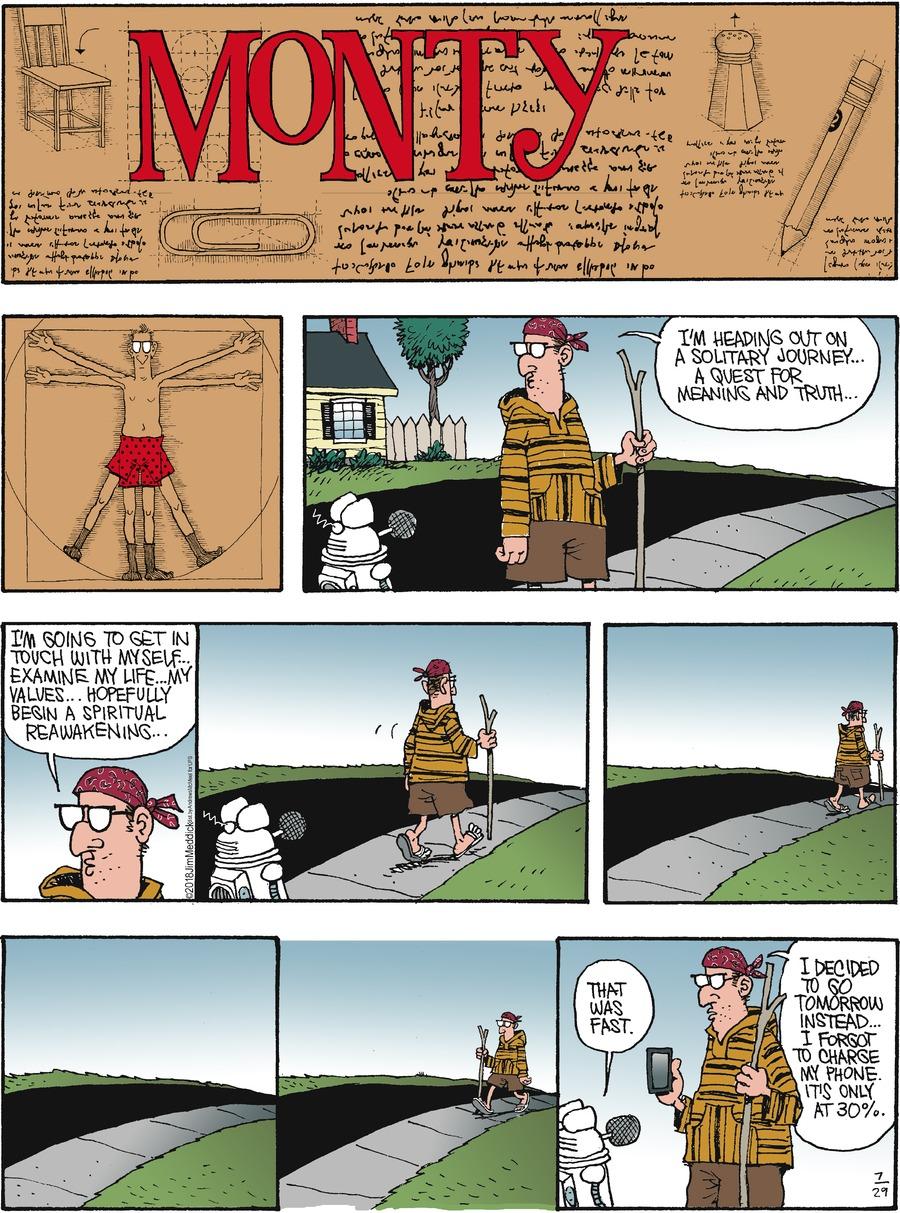 Monty Comic Strip for July 29, 2018