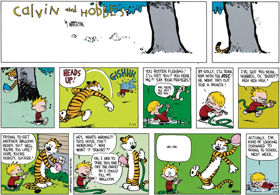 Calvin and Hobbes for Aug 27, 1989 Comic Strip