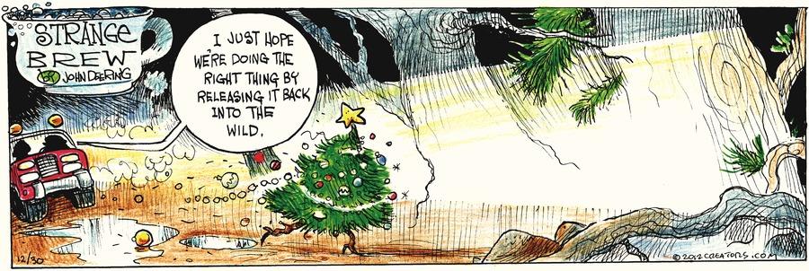 Strange Brew for Dec 30, 2012 Comic Strip
