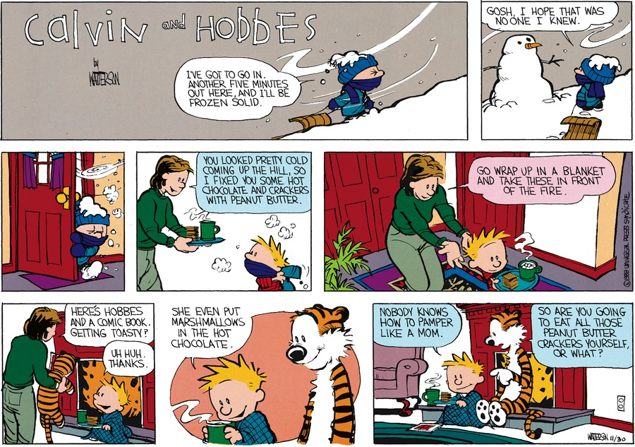 Calvin and Hobbes Comic Strip for January 17, 1988