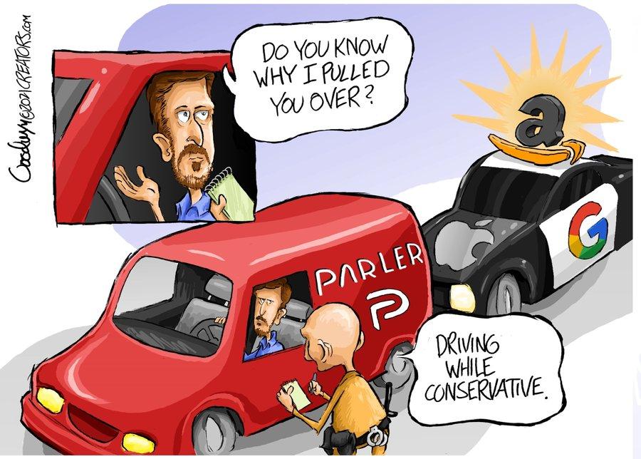 Al Goodwyn Editorial Cartoons Comic Strip for January 18, 2021