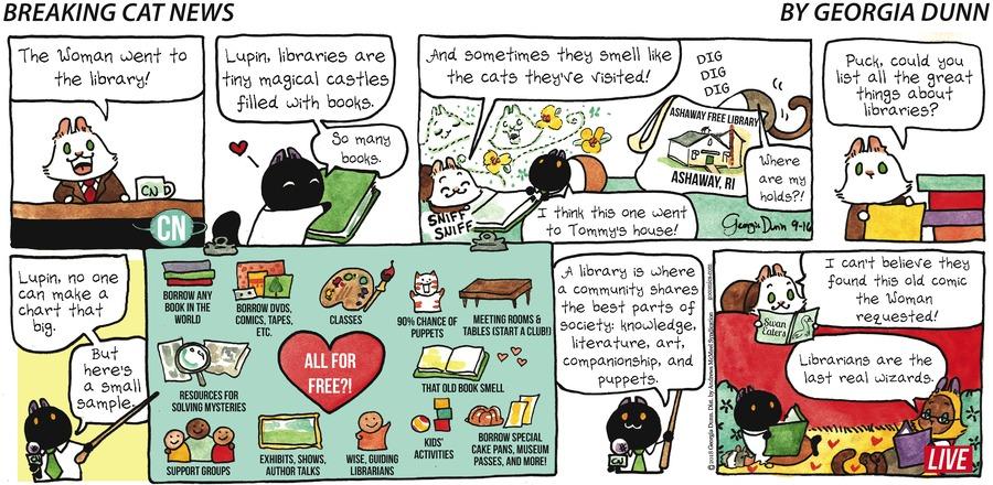 Breaking Cat News Comic Strip for September 16, 2018